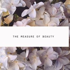 """""""l find beauty in the hidden things and things we don't really take time to admire or notice - tea in a demitasse, the fine details on the design of a vase, freckles, that gap between the front teeth and an upright posture""""  New blog post: The Measure of Beauty [Link in Bio] ___________ @sabloggers #blogpost #sabloggers #wordpressblog #southafricanblogger #blackswhoblog #blackgirlswhoblog #blogger"""