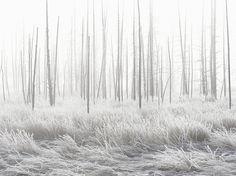 """Najlepsze zdjęcia w 2015 roku w kategorii """"Podróże"""" od National Geographic - Joe Monster"""