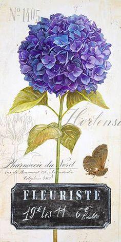 Imagem reproduzida numa tipografia do século XIX.