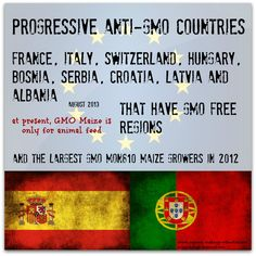 Progressive GMO Banning in EU (and the largest growers) Infographics, Cosmetics, Foods, Education, Self, Food Food, Info Graphics, Teaching, Training