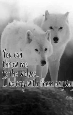 Check out & get awesome designs to ex… 💙🐺💜Love Wolf Quotes?Check out & get awesome designs. Wolf Qoutes, Lone Wolf Quotes, Wisdom Quotes, True Quotes, Wolf Life, Wolf Spirit Animal, Spirit Animals Game, Wolf Pictures, She Wolf