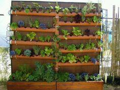 Huerta vertical para espacios reducidos