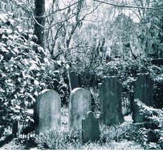 200 year old cemetarys in the middle of the city forgotten by time is where you may visit on one of the many haunted tours or ghost walks offered in Charleston South Carolina. Hotelscombined offer the lowest hotel rates to Charleston and any where else in the world