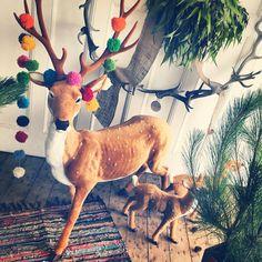 Christmas Window installation 1