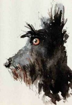 Scottie Dog, Watercolour, Patch Wheatley, SAA Professional Members' Galleries