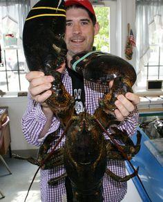 Giant Lobster!  Raaaaaaa!