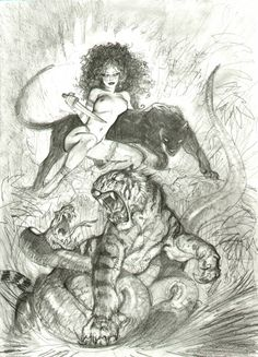 japanese art snake vs tiger | tiger vs snake, in andy brown's sold simon bisley art (all sold ...