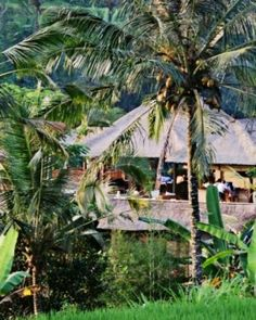 "This rainforest retreat is befitting of its name, which means ""relax."" #Jetsetter"