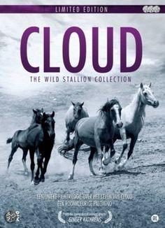 wild stallion dvd - Google zoeken