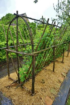 New garden landscaping design trellis ideas Potager Bio, Potager Garden, Veg Garden, Vegetable Garden Design, Edible Garden, Garden Landscaping, Fruit Garden, Landscaping Design, Garden Pots