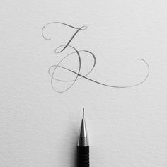 Flourished Letter Z Pencil Calligraphy, Calligraphy Worksheet, Copperplate Calligraphy, Calligraphy Handwriting, Calligraphy Letters, Penmanship, Flourish Calligraphy, Creative Lettering, Lettering Design