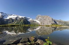 """Mirror Lake"" on Fürenalp above Engelberg, Switzerland Safari, Mirror Lake, Lucerne, Paragliding, Beautiful Scenery, Wonderful Places, Mount Rainier, Mount Everest, Hiking"