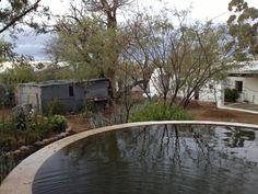 Karoo-oggend by die dam Wall, Room, Travel, Bedroom, Viajes, Rooms, Trips, Tourism, Rum