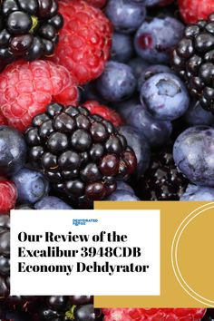 Excalibur 3948CDB 9-Tray Electric Food Dehydrator. Check out our review here! #fooddehydrator #dehydratedfood #excaliburdehydrator #bestdehydrator Excalibur Dehydrator, Portable Snacks, Electric Foods, Dehydrated Food, Dehydrator Recipes, In Season Produce, Beef Jerky, Healthy Snacks For Kids, Camping Meals