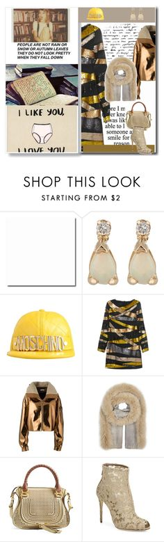 """""""warm up to the new year"""" by peeweevaaz ❤ liked on Polyvore featuring Loren Stewart, Moschino, Emilio Pucci, Masha Ma, AMA Pure, Chloé and Dolce&Gabbana"""