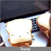 "Plug into USB port, place on hands to keep them ""toast""y warm :-)."