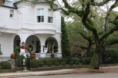 Charleston, SC!!! Bebe'!!! Traditional Southern Christmas decorations!!!