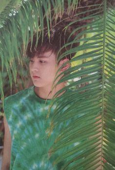 -Precious Maknae- my favorite photos of Jung Chanwoo © credit to the owners [do not edit] [started Hanbin, Chanwoo Ikon, Ikon Kpop, Ikon Wallpaper, Ikon Debut, Hip Hop, Yg Entertainment, Maui, Bobby