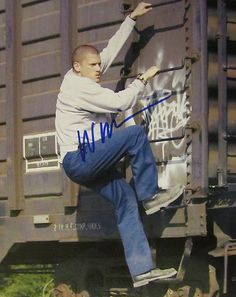 Wentworth Miller Signed Autographed 8x10 Photo w COA Prison Break | eBay
