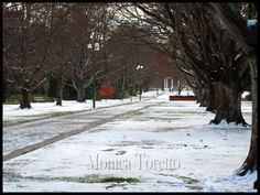 Queens Park - Invercargill, NZ Kiwiana, New Zealand, Queens, Scenery, Sweet Home, Australia, Spaces, Park, Travel