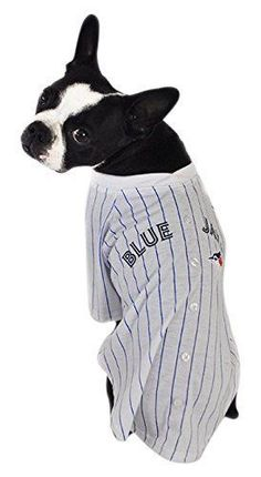 HUNTER MLB JBPT1265 Blue Jays Baseball Tee Uniform for Pets   Check this  awesome product by. Cat ClothingDog ... 9a37ae559