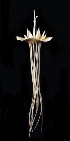 "Alain Mailland ~ ""Rituel"" ~ Wood Turning (Micocoulier) 2009"