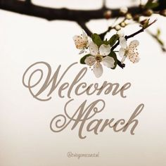 Seasons Months, Days And Months, Months In A Year, Four Seasons, New Month Wishes, March Quotes, Monthly Quotes, Hello March, Mom Planner