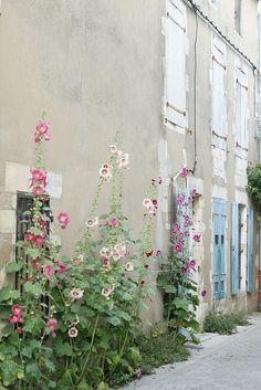 ile de ré,Oléron, Noirmoutier, je les aime toutes!