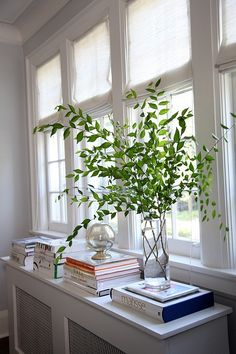 greenery in a tall vase (via a curious gardener: things I like this week...)