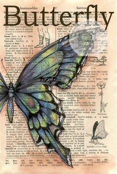 Blue-Green Butterfly Mixed Media Drawing on Distressed, Dictionary Page