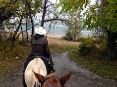 Trail riding towards Lake Erie in Ontario, Canada as seen between the ears of a horse