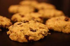 Nursing Cookies Recipe (gluten free, dairy free, sugar free, egg free)