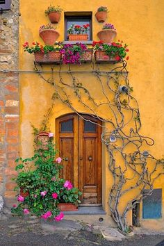 Creeping vines and pink flowers surrounds a rustic wooden door.