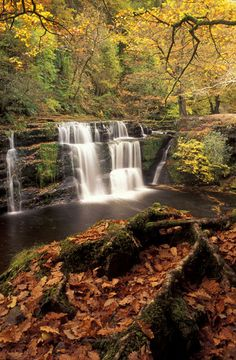 Waterfall in the Brecon Beacons National Park, Wales, UK David Noton Photography Beautiful Waterfalls, Beautiful Landscapes, Landscape Photography, Nature Photography, Exposure Photography, Beautiful World, Beautiful Places, Brecon Beacons, Waterfall Fountain