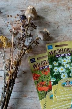 Discover the 2020 garden trends to make your garden more beautiful, easier to look after or more sustainable. Tips from experts at the Garden Press Event. Cottage Garden Plants, Garden Trees, Garden Pots, Austin Rosen, Meme Design, Insect Hotel, Crocosmia, Easy Care Plants, Growing Roses