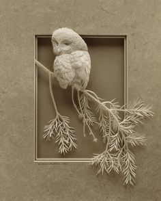 I can't imagine how time-intensive these paper sculptures from Calvin Nicholls must be, but they are beautiful!