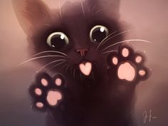 Hollypaw
