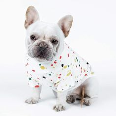 French Bulldog wearing the Mud Splash dog tank shirt French Bulldog Clothes, Cute French Bulldog, French Bulldogs, Dog Wear, Dog Memorial, Dog Hoodie, Tank Shirt, Beautiful Creatures, Small Dogs