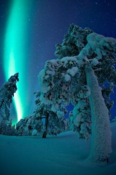 "popelkuschristmas: "" Northern Lights over Finland """