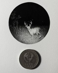 Deer in the Headlights. Detailed Tiny Miniature Ink Drawings. By Mateo Pizarro.