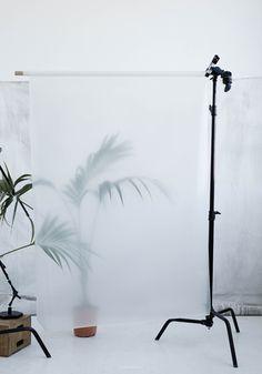 Kristina Dam - Palm II - 70 x 100 cm