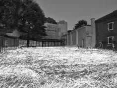 Hara Museum Web | 原美術館 | 展覧会 | 光―呼吸 時をすくう5人 Exposure Photography, Long Exposure, Japanese Artists, Art Museum, Outdoor, Spoon, Photographs, Inspiration