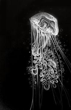 Jellyfish - graphics - illustrations Murga