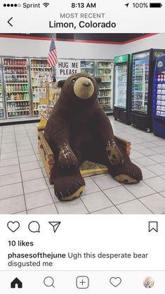 Hug Me Please, Visit Colorado, Bear, Bears