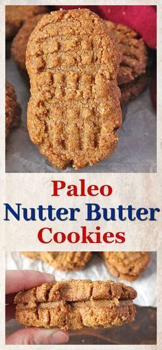 Paleo Nutter Butter Cookies- gluten free, dairy free, and so delicious! A healthy version of the popular cookie. Paleo Nutter Butter Cookies- gluten free, dairy free, and so delicious! A healthy version of the popular cookie. Nutter Butter Cookies, Paleo Cookies, Gluten Free Cookies, Gluten Free Desserts, Dairy Free Recipes, Gluten Free Recipes, Whole Food Recipes, Cooking Recipes, Cookie Butter