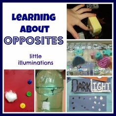 Learning About Opposites