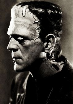 Boris Karloff as Frankenstein's monster in Bride of Frankenstein (1935).  Boris' other entries among his 206 film credits in the best 1,001 films are The Criminal Code, Frankenstein, Scarface, The Old Dark House, The Mummy, The Lost Patrol, The Black Cat, Son of Frankenstein, The Body Snatcher and Lured.