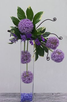 Purple Allium (the giant purple balls), purple statice (the smaller purple flower), variegated fatsia leaf (the green foliage) monkey tail fern shoots and blue colored glass in the bottom of a tall cylinder vase to simulate water. Everything in this hi-style arrangement is fresh flowers. The water supply is soaked Oasis (floral foam) hidden among the green foliage. The arrangement actually sits atop the container.