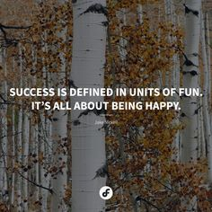 Success Is Defined In Units Of Fun. Itu0027s All About Being Happy   Jake  Nickell