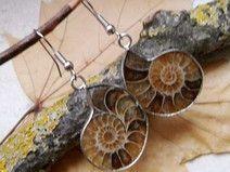 Ammonit Fossil, Ohrringe, Silber plattiert